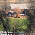 Ramino-Karoo-Guest-Farm-161