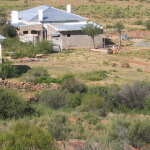 Ramino-Karoo-Guest-Farm-810